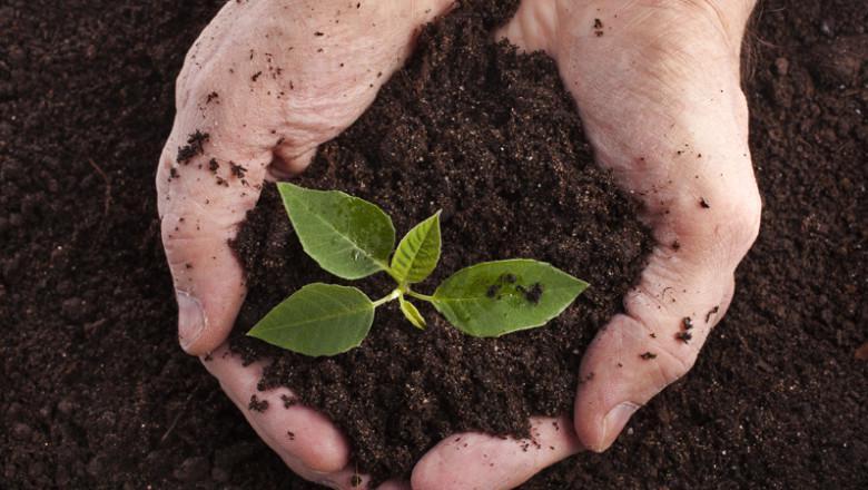 MBA em Manejo de Solo e Nutrição de Plantas 1+17X